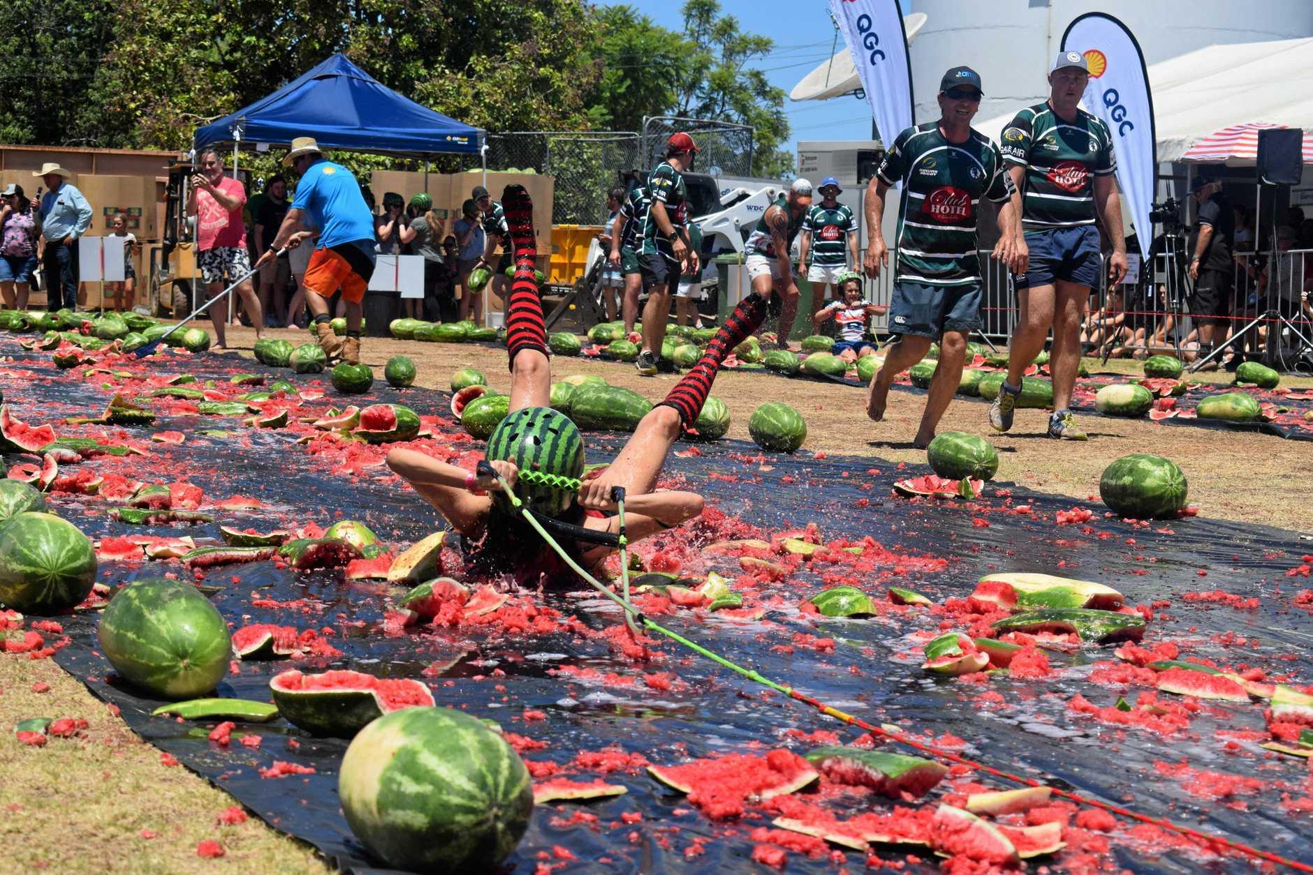 chinchila melon festival